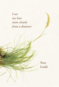 I could see my love more clearly from a distance by Nora Gould Brick Books, 2012