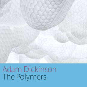 Adam Dickinson's The Polymers