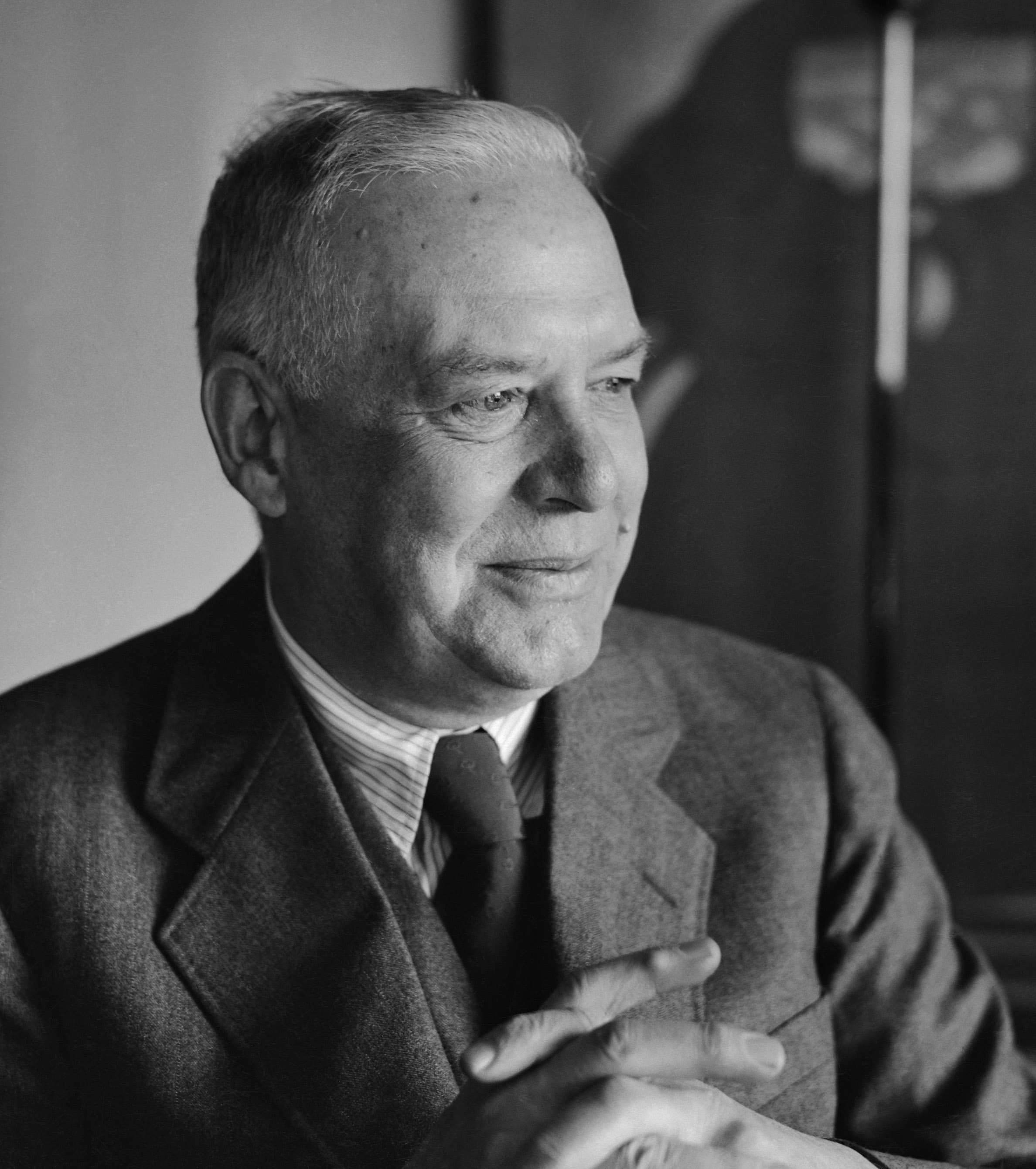 critical essays on wallace stevens