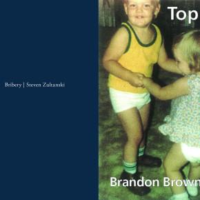 Trisha Low on Steven Zultanski's Bribery and Brandon Brown's Top 40