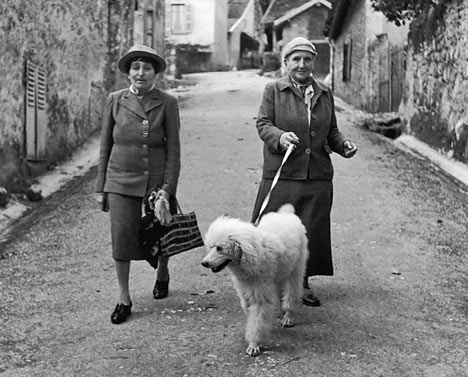 gertrude stein poetry and grammar essay Gertrude stein and cubist poetry - her response to a male tradition - manü mohr - essay - english language and literature studies - literature - publish your.