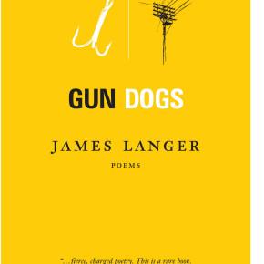 James Langer: On Beauty