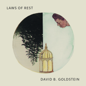 Adam Sol on David B. Goldstein: Laws of Rest