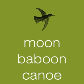 Alex Porco on Gary Barwin: Moon Baboon Canoe