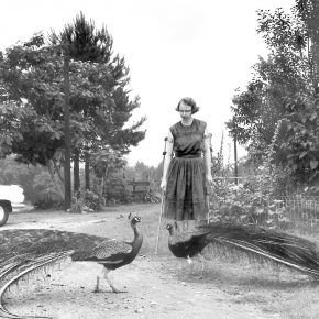 Flannery O'Connor reads A Good Man is Hard to Find